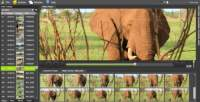 new Vidine  video software for private users to manage tons of video files